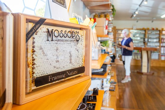 Tauranga, New Zealand: Our bespoke framed honey comb is a little piece of New Zealand that you can take home with you.