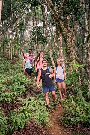 Isole Cook: Trek the mountains with Rarotonga's most experienced and knowledgeable guides Bruce.