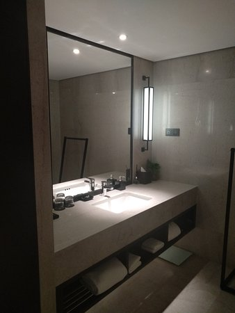 the toilet and powder room