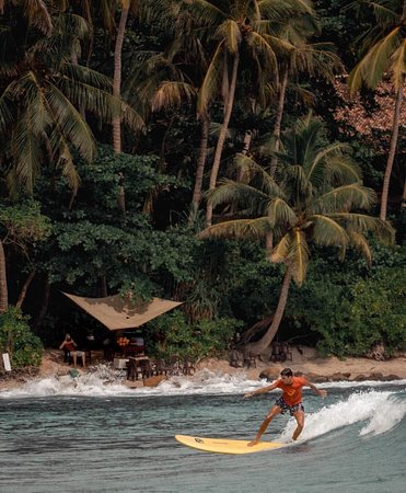 Lanka Safe Tours  Budget tour company in Sri Lanka 🇱🇰