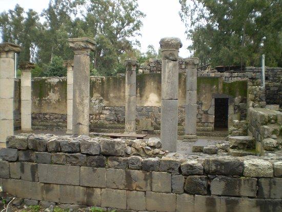 Ancient Katzrin Village and Synagogue: los restos de la Sinagoga
