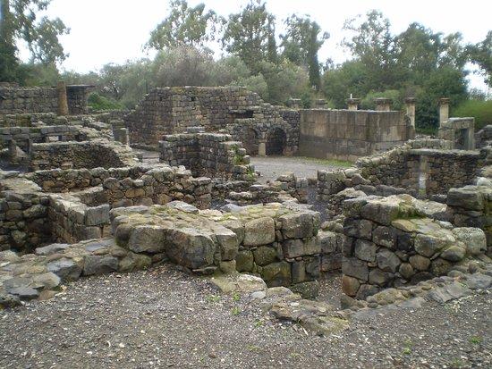 Ancient Katzrin Village and Synagogue: vista de las ruinas arqueológicas