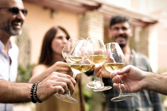 Sardinian mest unike vingård...