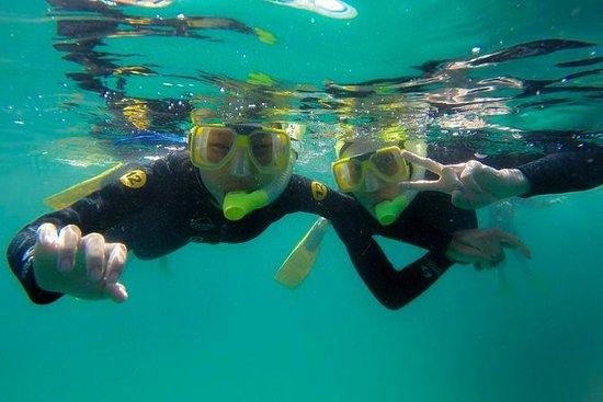 Guidade Snorkel Experience, Nybörjare