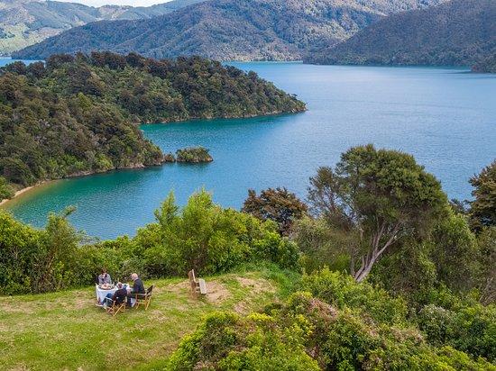 Marlborough Scenic And Wilderness Tours