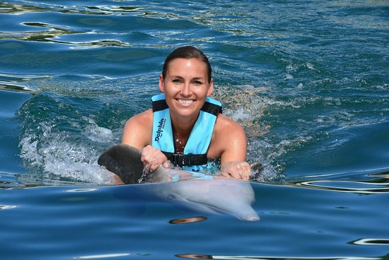 Our hosts for the day Dante and Angela - Picture of Dolphin