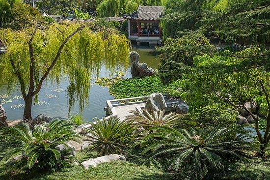 Chinese Garden landscape
