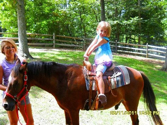 Land of Little Horses: Pony rides are very popular with the kids!