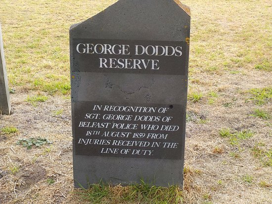 George Dodds Reserve
