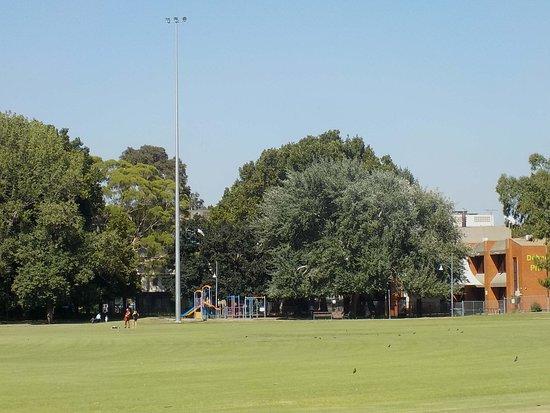 Debney's Park