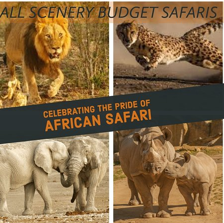 Kenya: Nothing but breathing the air of Africa, and actually walking through it, can communicate the indescribable sensations."