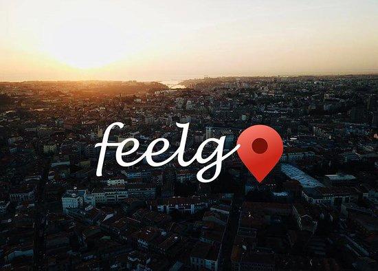 FEELGO PORTUGAL, LDA
