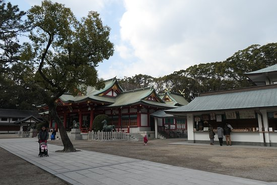 Nishinomiya Shrine: この道を塞ぐように生えているのは「審判の楠」と呼ばれるクスノキです。福男選びのレースの勝負に影響の多いポイントですね。
