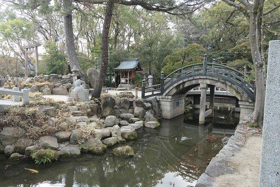 Nishinomiya Shrine: 社殿の前にある神池です。