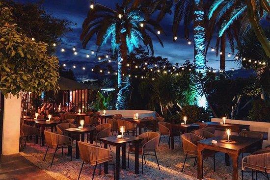 Finca La Plaza: Garden