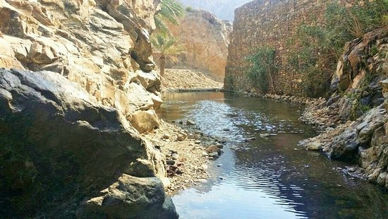 Wadi Shis