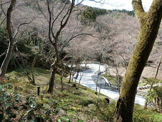 Kiyomizu-dera Temple Otowa Road