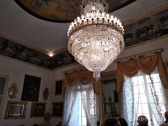 Olivar House / Palacio Olivar