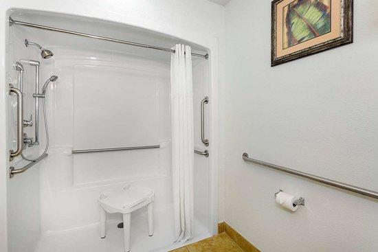 Days Inn & Suites by Wyndham Lakeland: Guest room bath