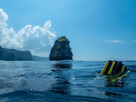 Sanctum Dive Nusa Penida: Exciting places to dive!