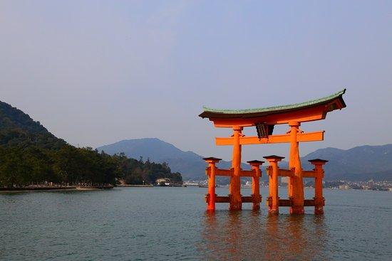 Itsukushima Shrine: 大鳥居