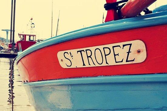 私人一日游:来自尼斯的小型货车Saint Tropez