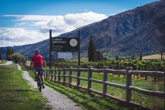 Bike The Wineries Full Day Tour