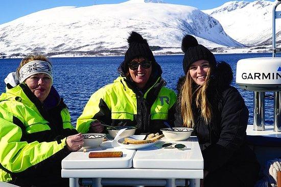Fjordcruise - Yacht de luxe Arctic...