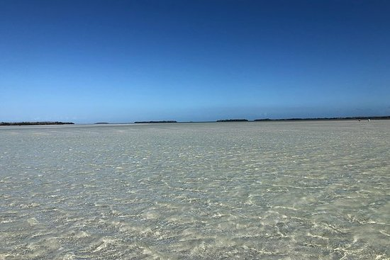 Sandbar Experience