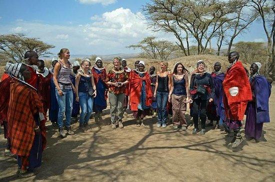 Mikumi National and Maasai village...