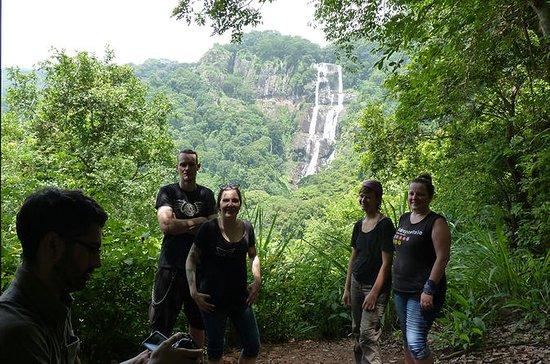 4 Days Safari&Hiking Mikumi National...