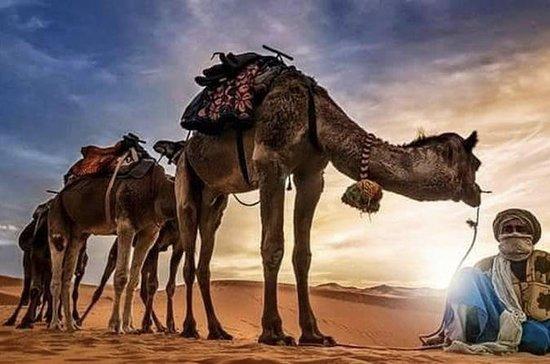 5 Day Northern Morocco Tour