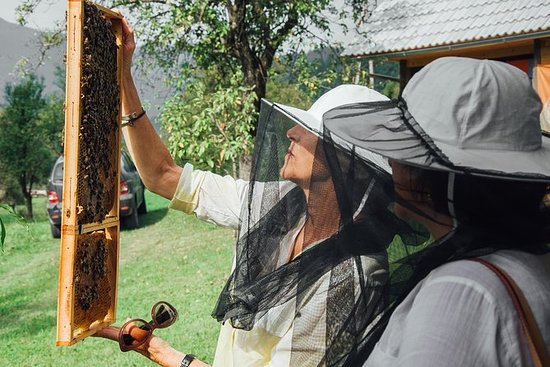 Lake Bled og Bee Farm