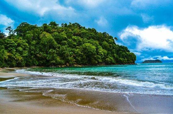 Forfait 8 jours au Costa Rica: San...