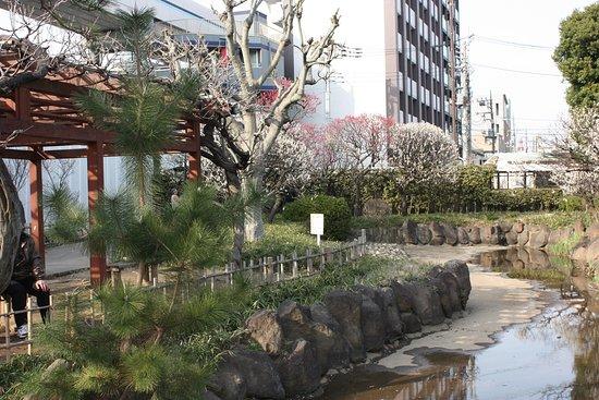 Seiseki Kamata Umeyashiki Park