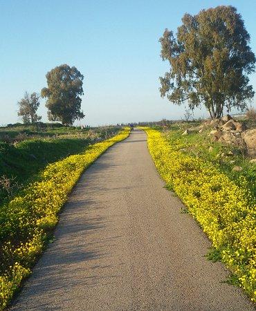 Eliad: A minute walk from the farm