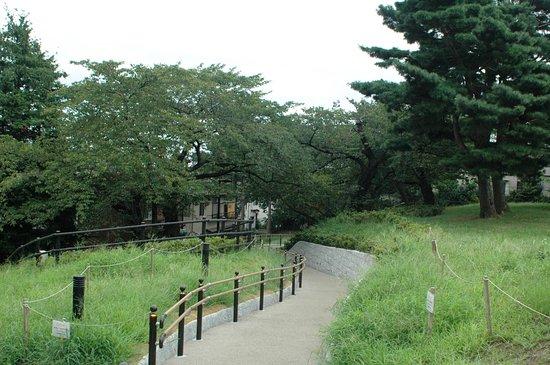 Unoki Matsuyama Park