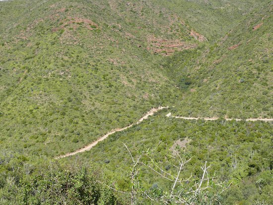Baviaanskloof Nature Reserve, South Africa: Long way down.