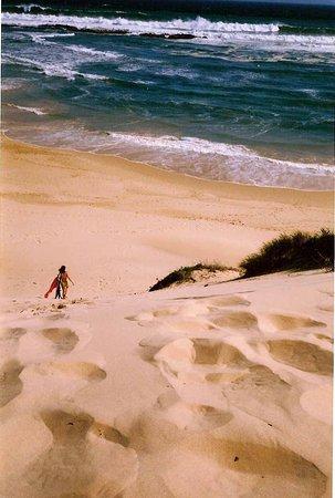 En #Sudáfrica he disfrutado de playas maravillosas. En la llamada Garden Route (cerca de Ciudad del Cabo) hay arenales solitarios con kilómetros de dunas. Todo un descubrimiento.