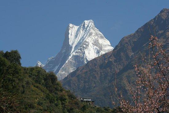 Tours Trekking in Nepal