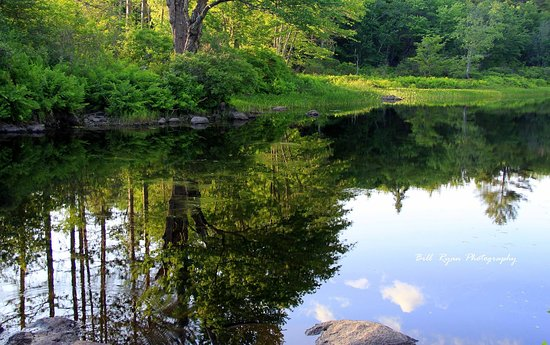Peterborough, NH: Great place for fishing from the canoe!