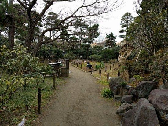 Himuro Tsubaki Garden