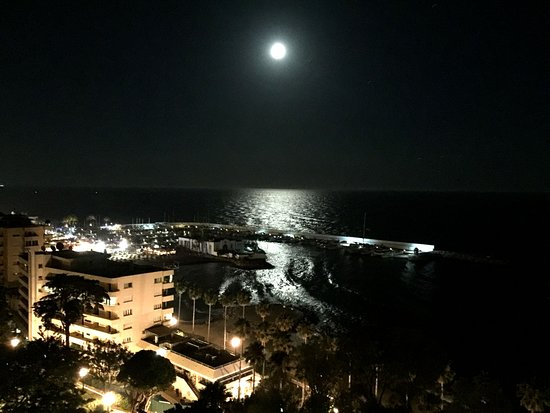 View of Marbella Marina (night)