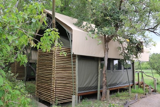 Moremi Game Reserve, Botswana: Tente