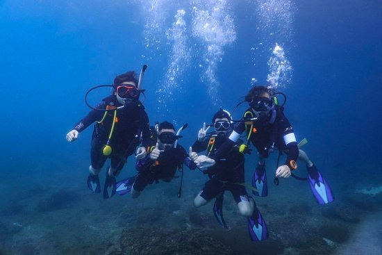 a group photo underwater