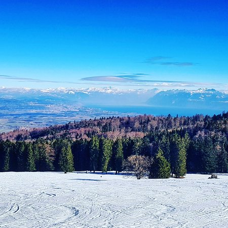 فود, سويسرا: View from the Mont Tendre 🇨🇭! You can see the Alps (swiss mountains), and the swiss geneva (leman) lake ! Enjoy