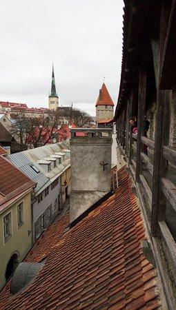 Tallinn, Estland: Hellemann tower
