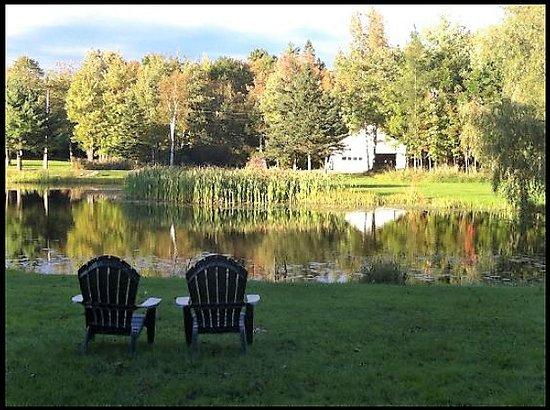 Eden Village Motel and Cottages: Eden Village Pond