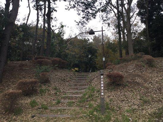 Yumenoshima Green Road Park