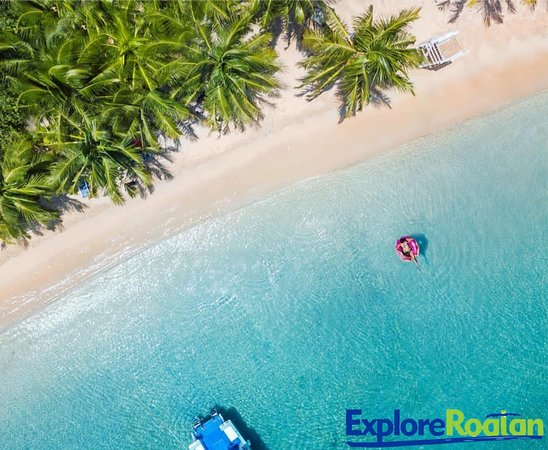 Explore Roatan Tours